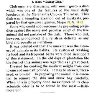 Muskrat article
